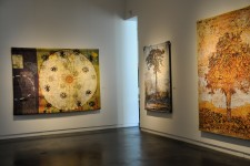 Gail Severn Gallery